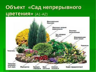 Объект «Сад непрерывного цветения» (А1-А2)