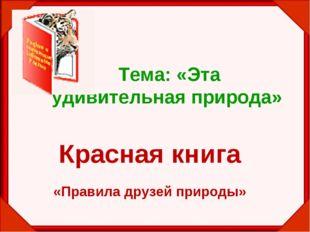 Красная книга «Правила друзей природы» Тема: «Эта удивительная природа»