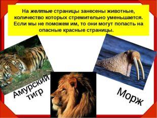 На желтые страницы занесены животные, количество которых стремительно уменьша