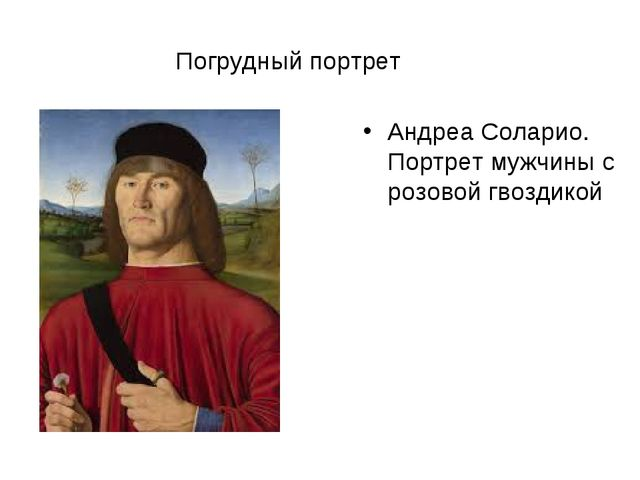 Погрудный портрет Андреа Соларио. Портрет мужчины с розовой гвоздикой