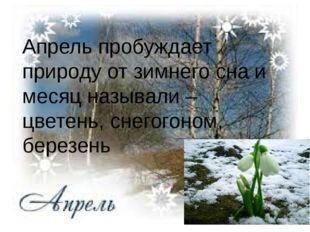Апрель пробуждает природу от зимнего сна и месяц называли – цветень, снегого