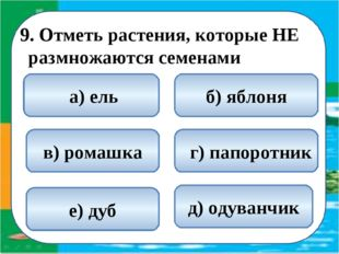 9. Отметь растения, которые НЕ размножаются семенами  г) папоротник а) ель