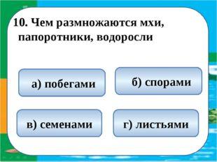10. Чем размножаются мхи, папоротники, водоросли  б) спорами а) побегами в)