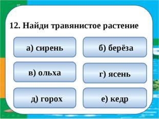 12. Найди травянистое растение  д) горох б) берёза а) сирень г) ясень в) ол