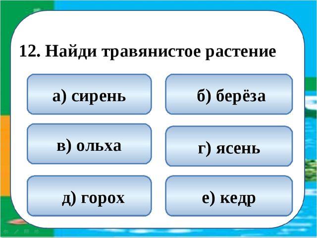 12. Найди травянистое растение  д) горох б) берёза а) сирень г) ясень в) ол...