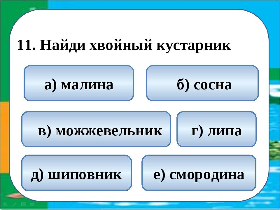 11. Найди хвойный кустарник  в) можжевельник б) сосна а) малина г) липа д)...