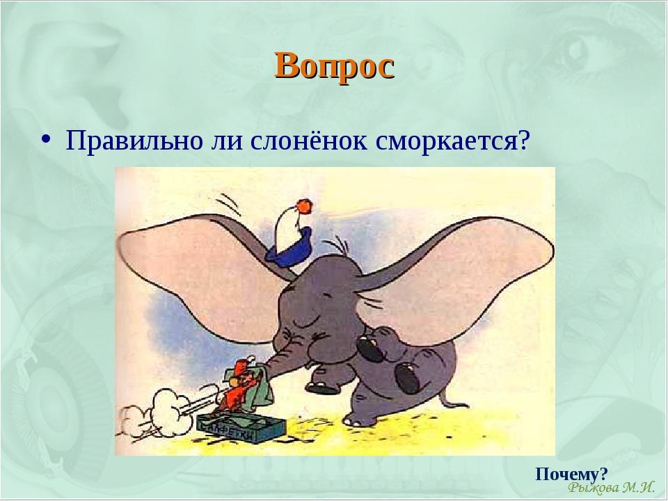 Вопрос Правильно ли слонёнок сморкается? Почему?