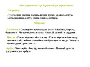 Используемые только в карачаевской паремиологии: Например: Лук/чеснок, цветок