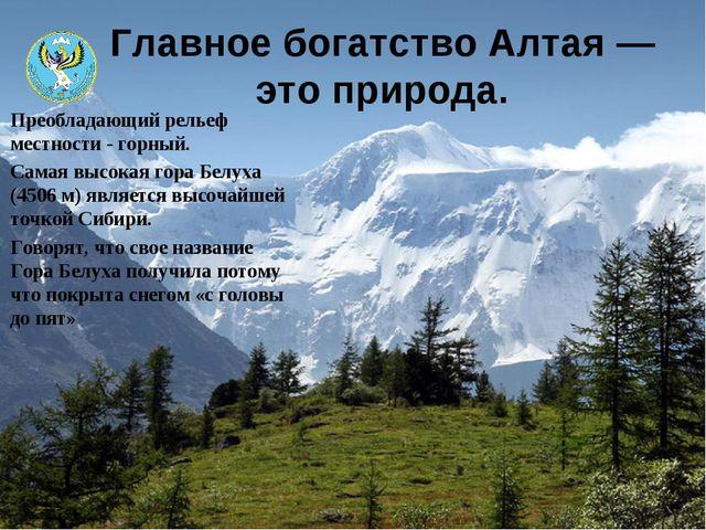 Главное богатство Алтая— это природа. Преобладающий рельеф местности - горны...