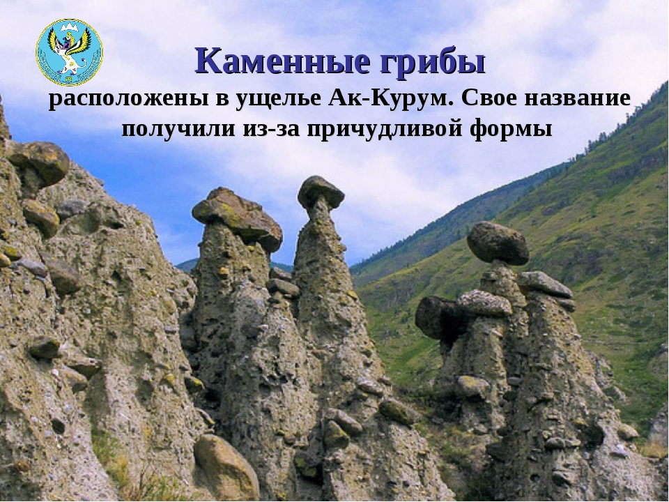 Каменные грибы расположены в ущелье Ак-Курум. Свое название получили из-за пр...
