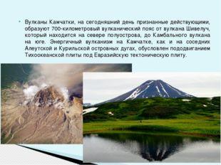 Вулканы Камчатки, на сегодняшний день признанные действующими, образуют 700-к