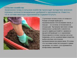 Сельское хозяйство Загрязнение почвы в сельском хозяйстве происходит вследств