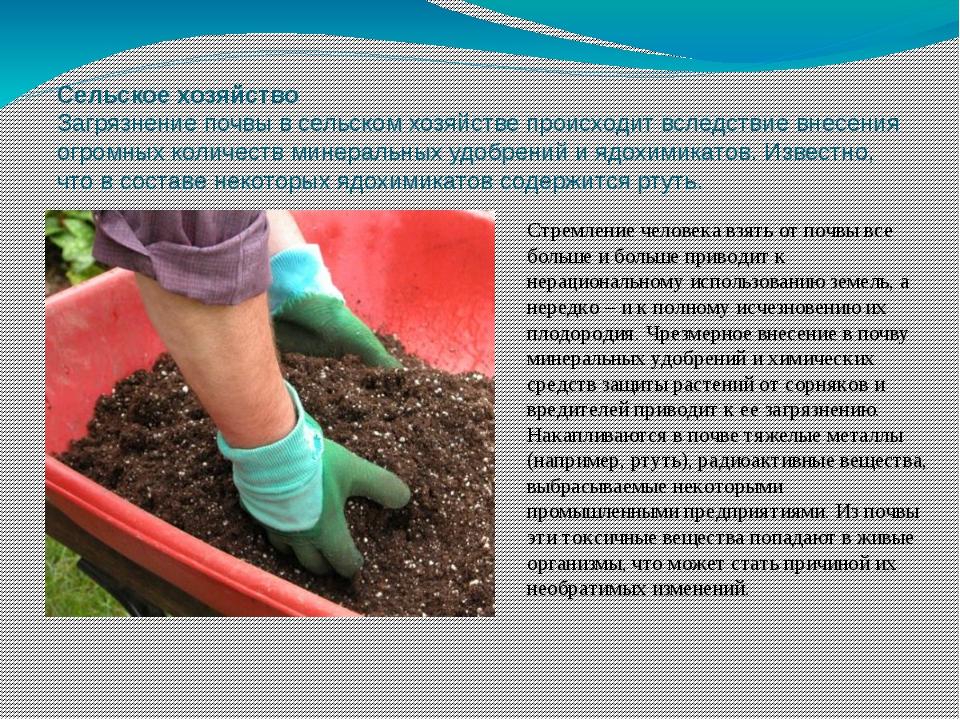 Сельское хозяйство Загрязнение почвы в сельском хозяйстве происходит вследств...