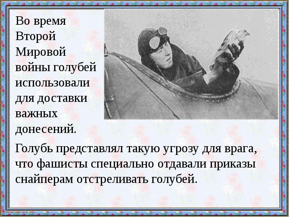Во время Второй Мировой войны голубей использовали для доставки важных донес...