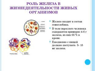 РОЛЬ ЖЕЛЕЗА В ЖИЗНЕДЕЯТЕЛЬНОСТИ ЖИВЫХ ОРГАНИЗМОВ Железо входит в состав гемог