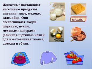 Животные поставляют населению продукты питания: мясо, молоко, сало, яйца. Они