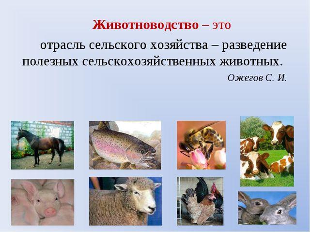 Животноводство – это отрасль сельского хозяйства – разведение полезных сельск...