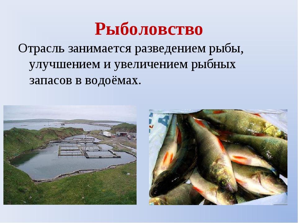 Рыболовство Отрасль занимается разведением рыбы, улучшением и увеличением рыб...