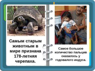Самым старым животным в мире признана 178-летняя черепаха. Самое большое коли