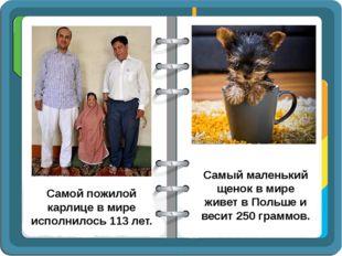 Самой пожилой карлице в мире исполнилось 113 лет. Самый маленький щенок в мир