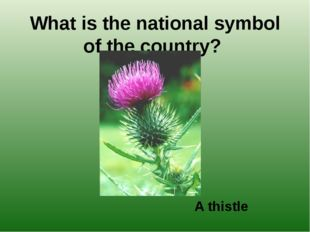 What is the national symbol of the country? A thistle