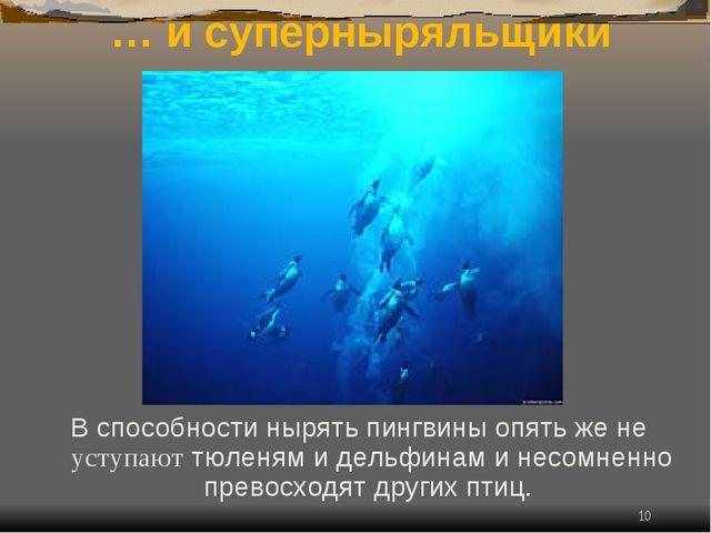 * … и суперныряльщики В способности нырять пингвины опять же не уступают тюле...