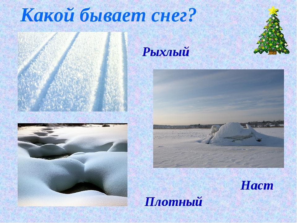 Рыхлый Плотный Наст Какой бывает снег?