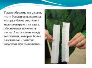 Таким образом, мы узнали, что у бумаги есть волокна, которые более жесткие и