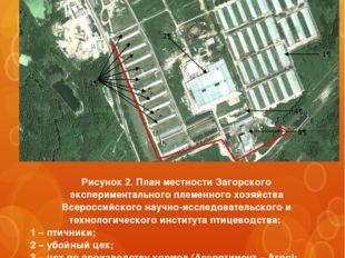 Рисунок 2. План местности Загорского экспериментального племенного хозяйства