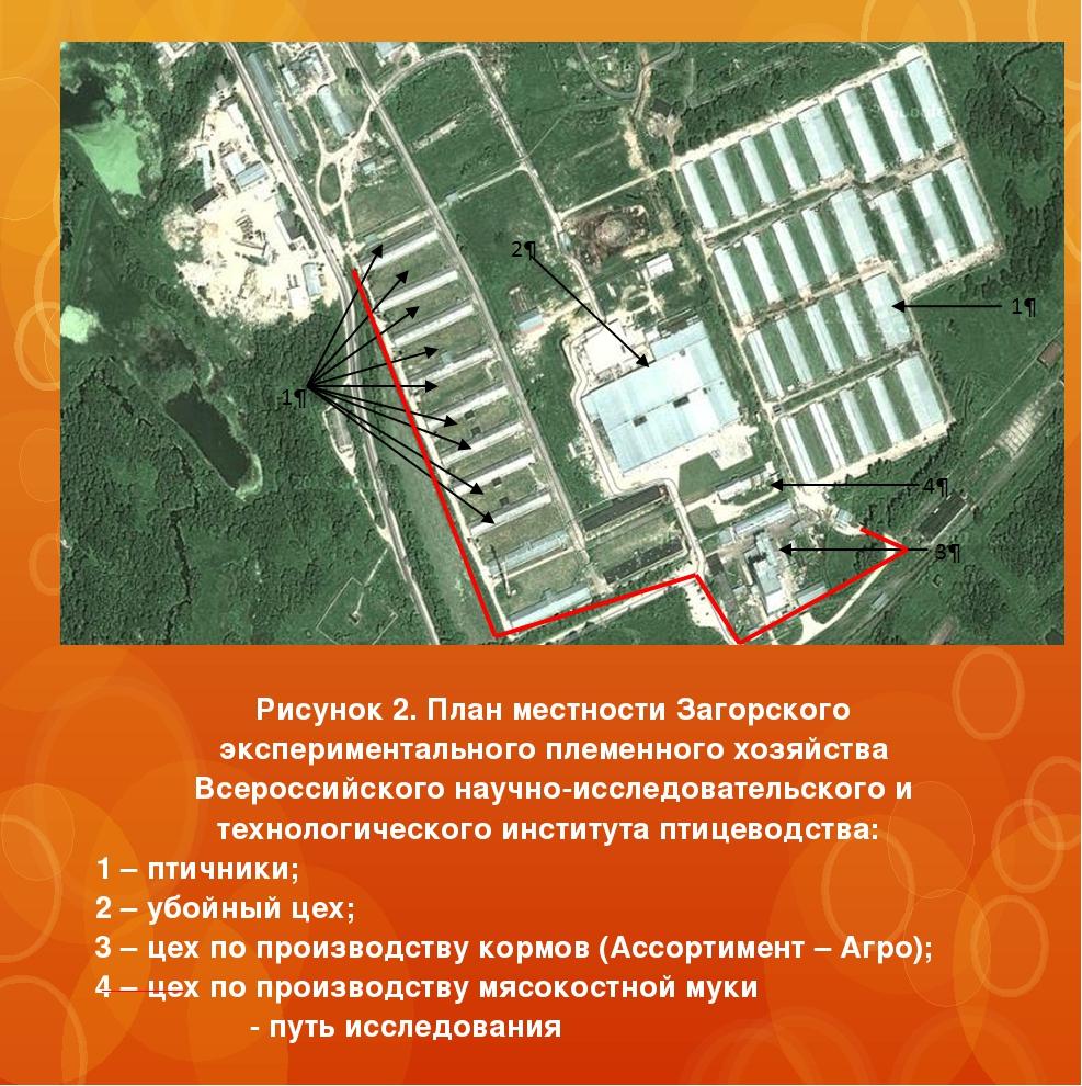 Рисунок 2. План местности Загорского экспериментального племенного хозяйства...