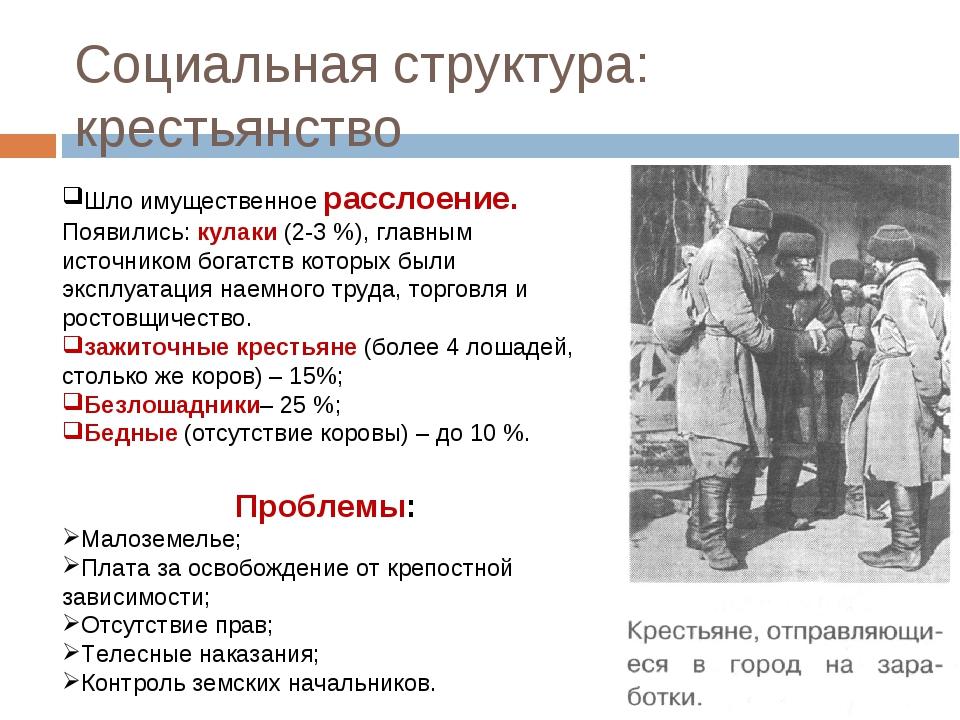 Социальная структура: крестьянство Шло имущественное расслоение. Появились: к...