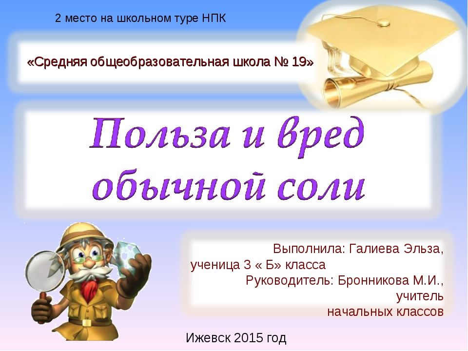 Ижевск 2015 год 2 место на школьном туре НПК