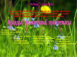 Адам әрекеті Ұзақ жылдар бойы Аралға құятын ірі өзендер Амудария мен Сырдари