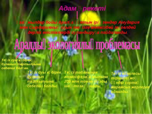 Адам әрекеті Ұзақ жылдар бойы Аралға құятын ірі өзендер Амудария мен Сырдари...