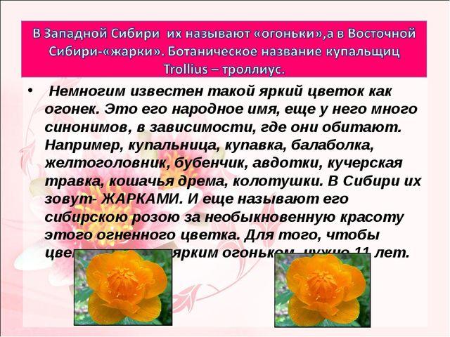 Немногим известен такой яркий цветок как огонек. Это его народное имя, еще у...