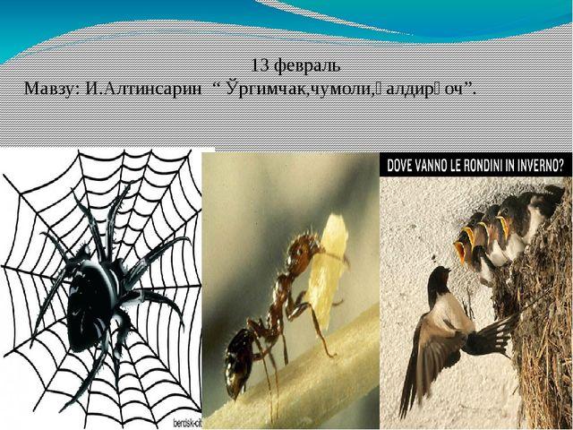 """13 февраль Мавзу: И.Алтинсарин """" Ўргимчак,чумоли,қалдирғоч""""."""