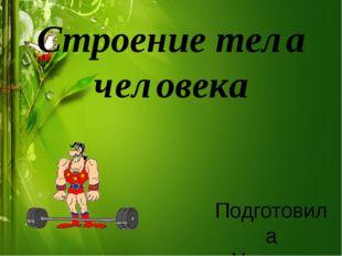 Строение тела человека Подготовила Учитель начальных классов Зайцева Ирина Вя