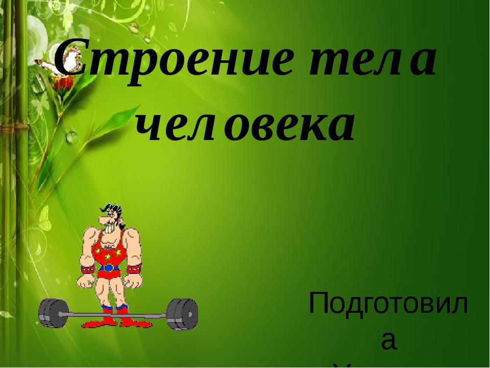 Строение тела человека Подготовила Учитель начальных классов Зайцева Ирина Вя...