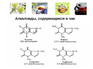 Алкалоиды, содержащиеся в чае