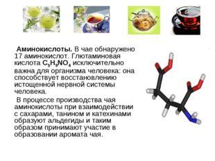 Аминокислоты. В чае обнаружено 17 аминокислот. Глютаминовая кислота C5H9NO4