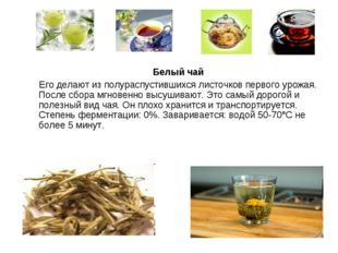 Белый чай Его делают из полураспустившихся листочков первого урожая. После с