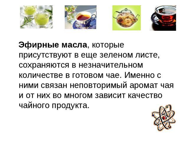 Эфирные масла, которые присутствуют в еще зеленом листе, сохраняются в незна...