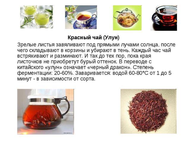 Красный чай (Улун) Зрелые листья завяливают под прямыми лучами солнца, после...