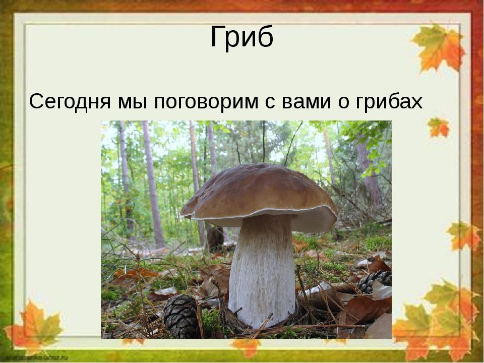 Гриб Сегодня мы поговорим с вами о грибах