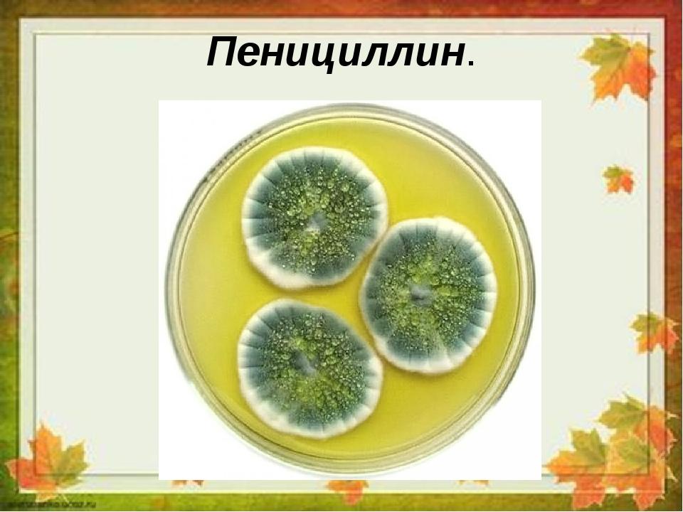 Пенициллин.