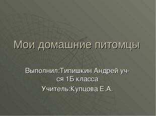 Мои домашние питомцы Выполнил:Типишкин Андрей уч-ся 1Б класса Учитель:Купцова