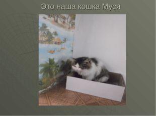 Это наша кошка Муся