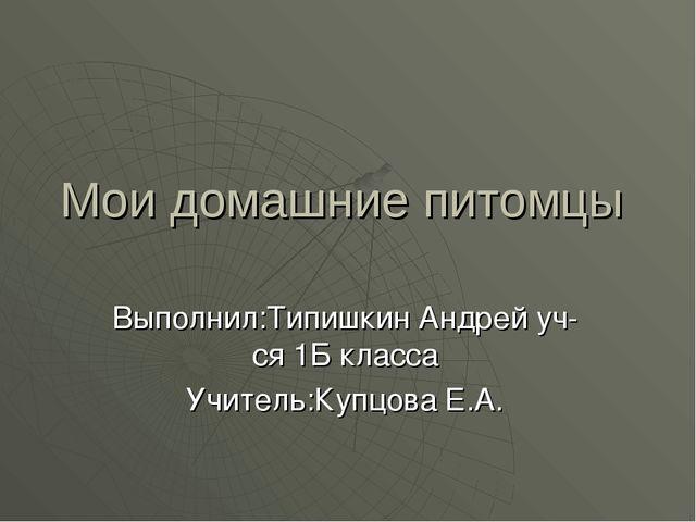 Мои домашние питомцы Выполнил:Типишкин Андрей уч-ся 1Б класса Учитель:Купцова...