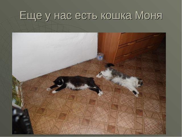 Еще у нас есть кошка Моня