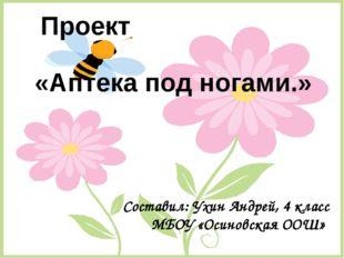 «Аптека под ногами.» Проект Составил: Ухин Андрей, 4 класс МБОУ «Осиновская О